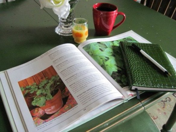 Jeanie Merritt organizes her garden plans during Winter