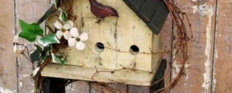 Annie Steen's birdhouse ladder - featured