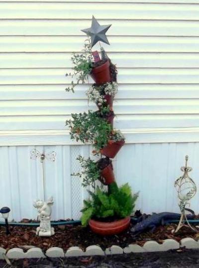 "Colleen Sharpe Starnessays, ""My first garden…inspired by all my new friends at Flea Market Gardening."""