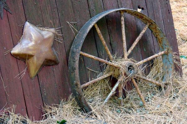 Barn door is background to a few rusty treasures