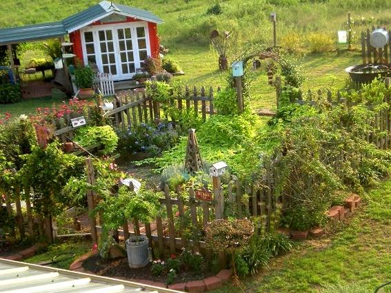 Fantastic overview of Billie's fenced garden