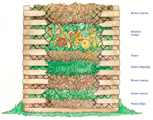 How to layer the compost pile Credit, David Lanford