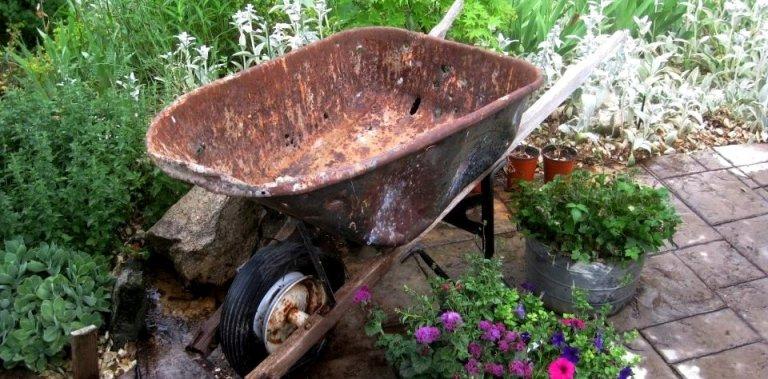 Empty wheelbarrows: Transform them for the garden!