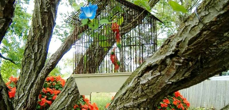 Brilliant garden birdcages!