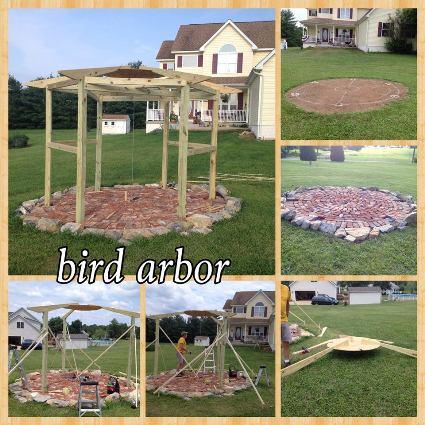 Pin and save Toni's bird arbor project