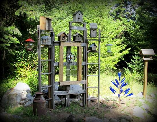 Kirk Willis's trellis creates a focal point, birdie community center with all the feeders in place