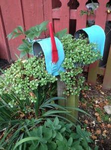 Myra Glandon's delightful mailbox gave me an idea