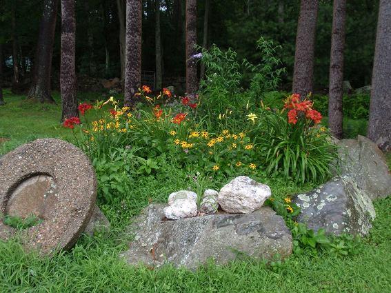 Cherrie's woodsy flower bed