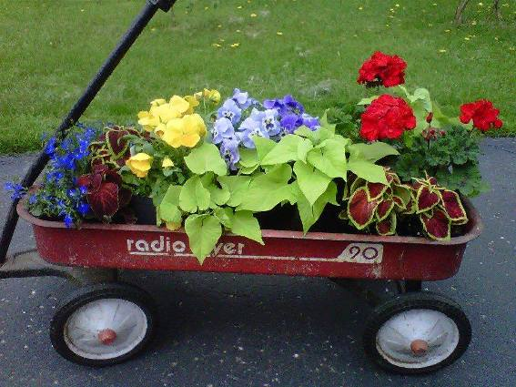 Loretta Fuller's colorful annual garden