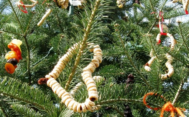 Bird feeder tree