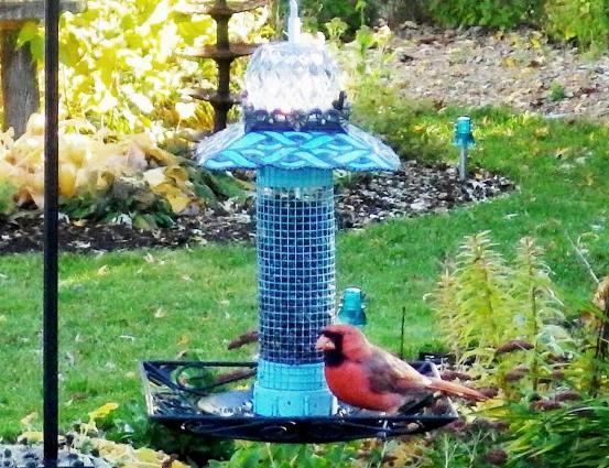 Ann Elias's signature teal stacked bird feeder