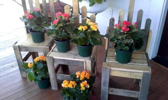 Three pallet chairs as plant stands