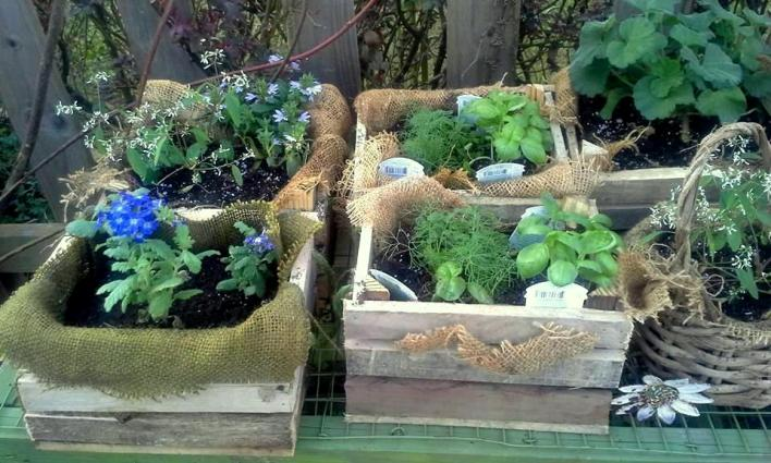 Little pallet 'crate' planters hold herbs