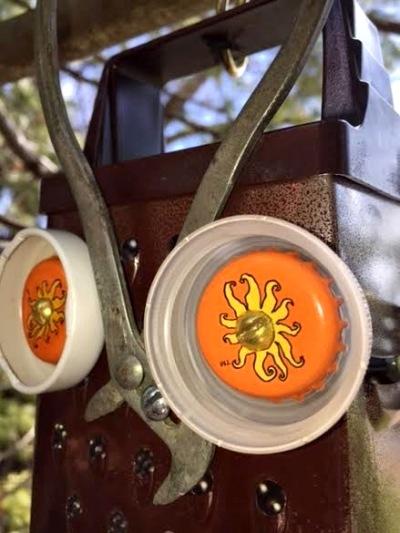 Plier-beaked owl's detail