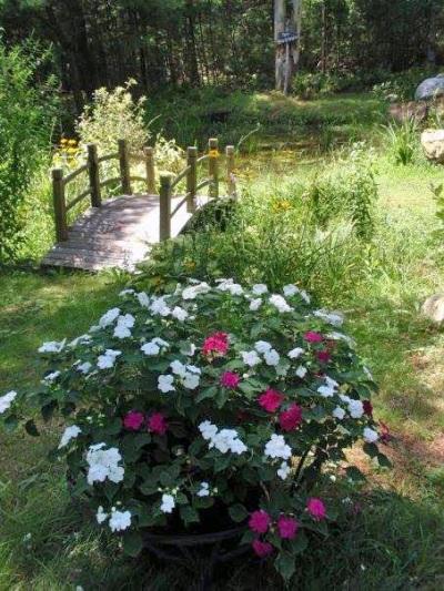 Cherrie Carine secret garden path