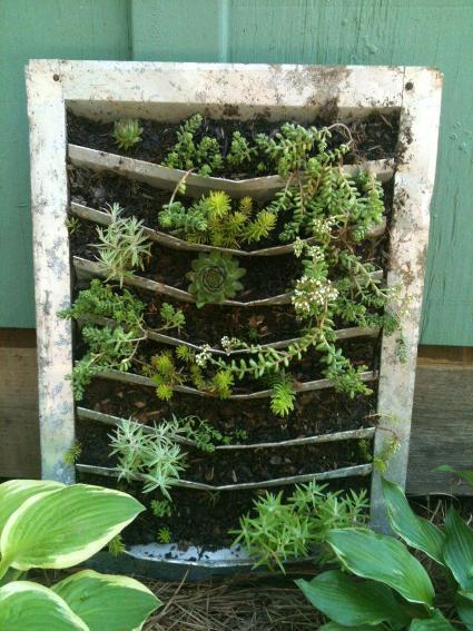 Cindy Barton's unique planter