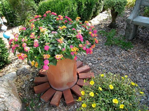 Bricks set all around the lantana pot. Clever