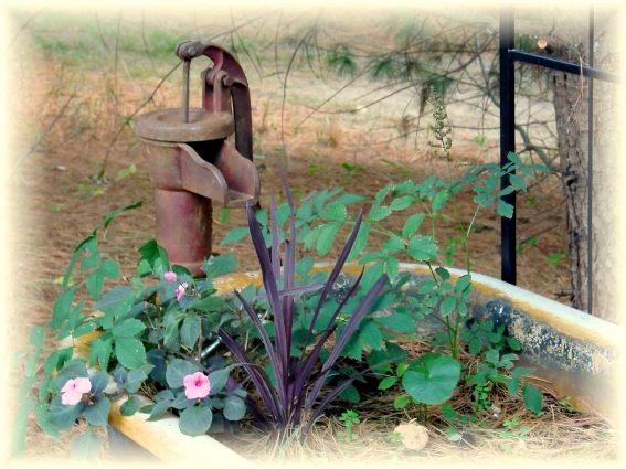 Jeanne Sammons's rusty pump