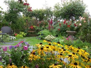 Kathy Juracek edges her lawn with a wide border