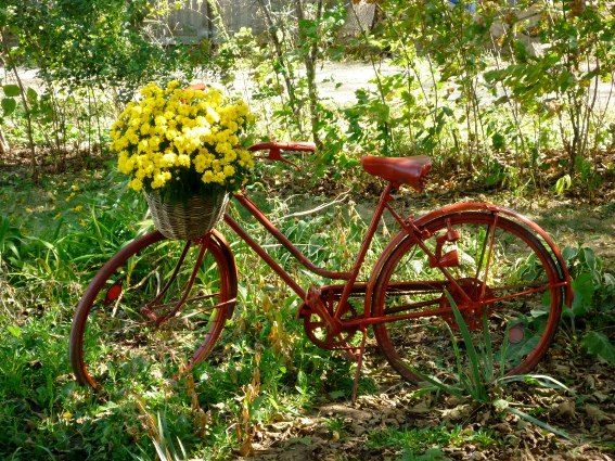 Lori Gerry's bike..red and yellow