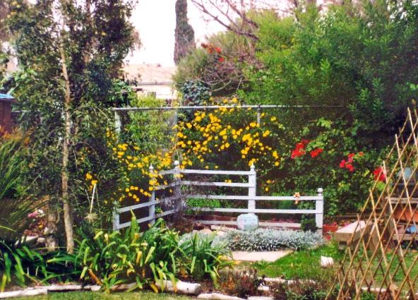 Madeline's tiny garden