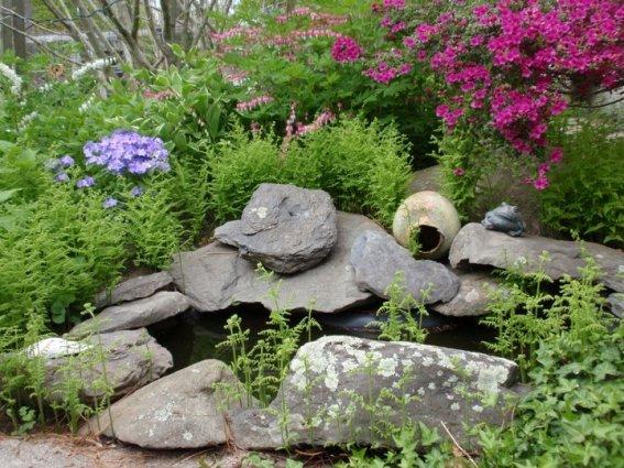 A little rock pond