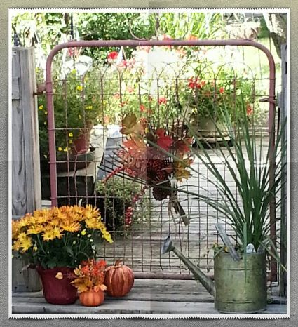 Nancy Carter uses this vintage wire gate as part of a fence