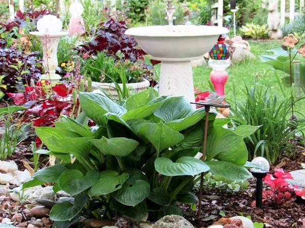 I like my birdbaths made out of old bowls