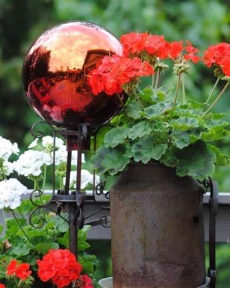 Teresa's summer garden