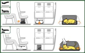 Sleepypod Air Airline Pet Carrier