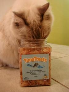 TunaTreats and Trigg