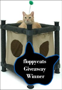 Winner of Veteran's Day Giveaway! Kitty Clubhouse From FelineFurniture.com!