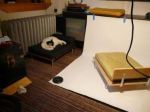 ModPet Cat Bed