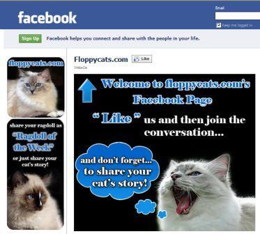 Floppycats.com's Facebook March 2011