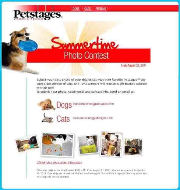 Petstages Summertime Cat Photo Contest