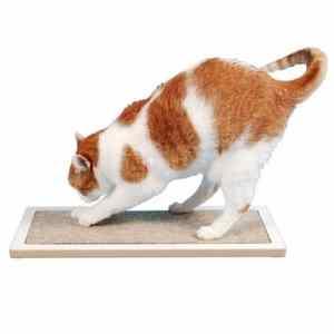 Square Cat Habitat Lo Floor Scratcher