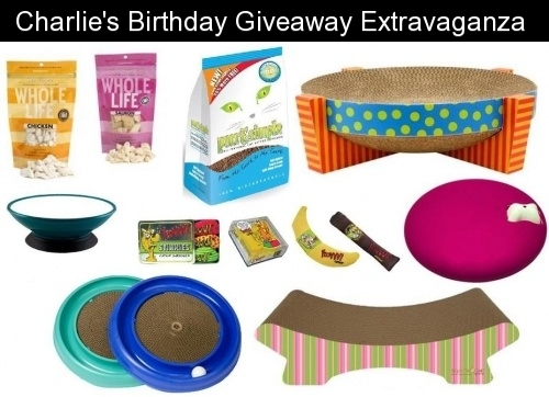 Charlie Birthday Giveaway Winner