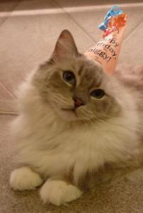 Happy 2nd Birthday Trigg