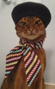 multicolor striped neck scarf $13