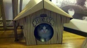 Huxleys Cabin