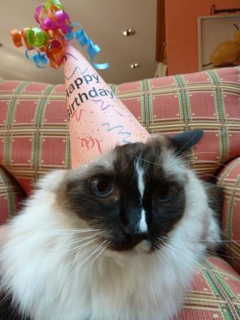 Murphy Birthday August 2012