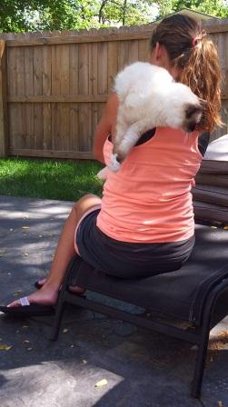 How to Hold a Ragdoll Kitten over the shoulder sitting down