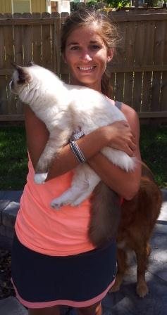 How to Hold a Ragdoll Kitten two arms