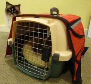 The Portable Pet and Charlie