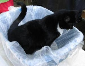 Sift Clean Litter Liners and Boots