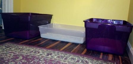 Voltaire's Litter Box Setup