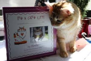Howie & Friends  Interactive Cat Book, It's a Cat's Life!