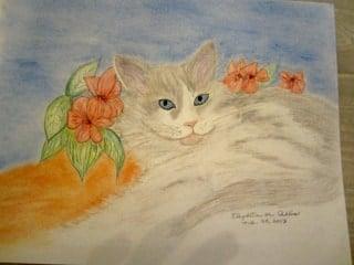 Ragdoll Cat Art by Betty Allis