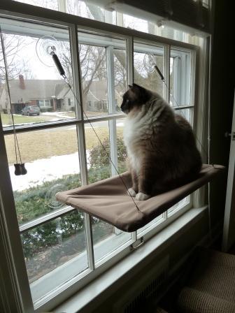 SunnySeat Cat Window Perches