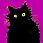 DC Langer – Contemporary Cat Artist